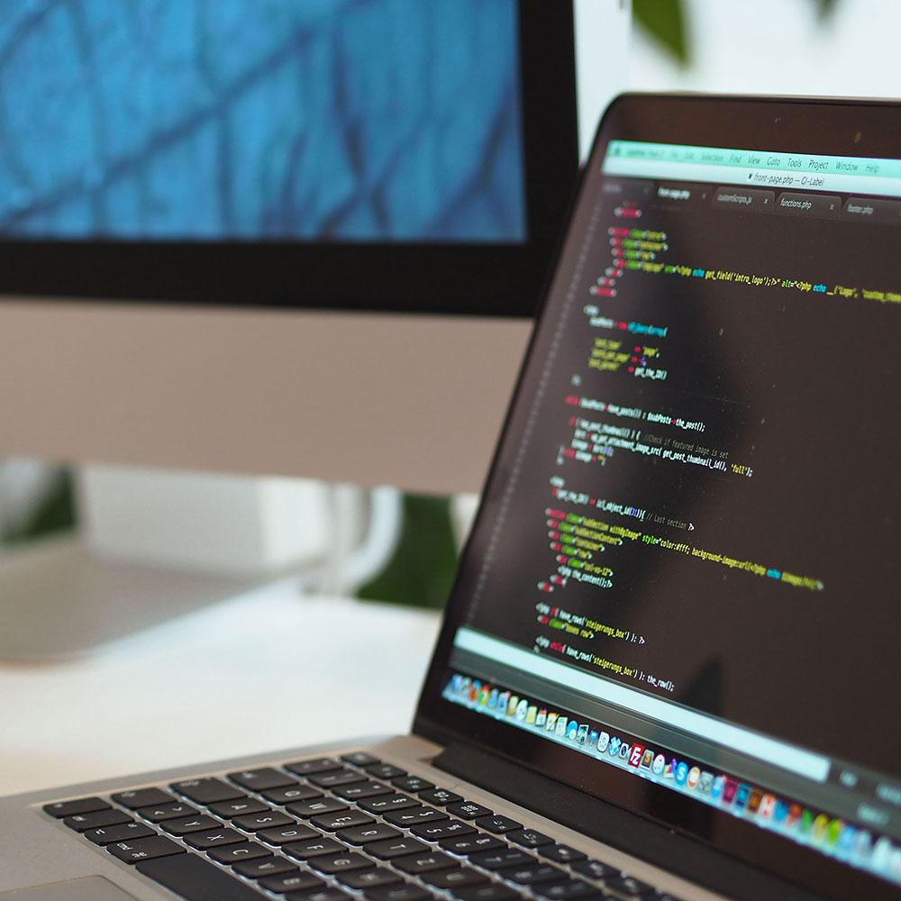 Variante B Programmierung & Web-Entwicklung